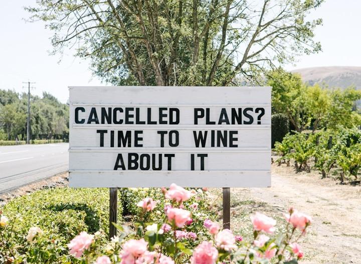Napa Wine Tour Drivers ™ napa-wine-tour-driver-plans Photo Gallery